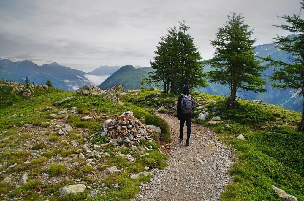 person wearing black leather backpack walking beside green leaf tree