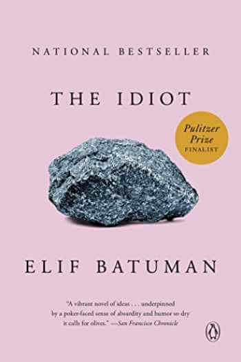 The Idiot by Elif Batuman about college life
