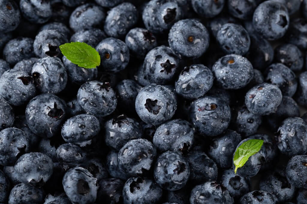 blueberries strengthen your ability to focus