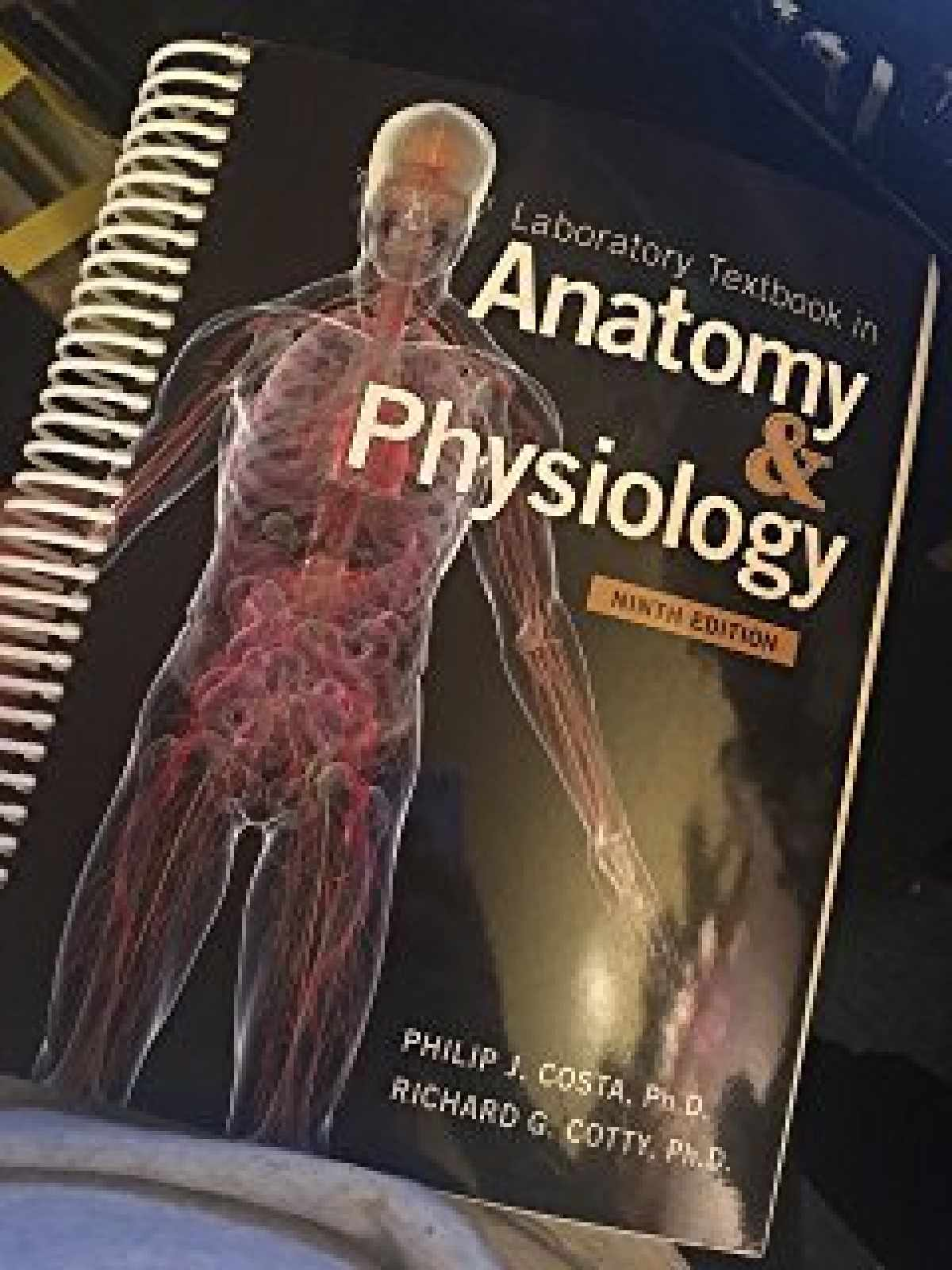 Sell, Buy or Rent Laboratory Textbook in Anatomy
