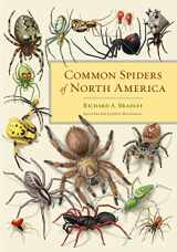 9780520274884-0520274881-Common Spiders of North America