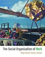 9781111300951-111130095X-The Social Organization of Work