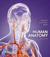 Sell back Human Anatomy (9th Edition) 9780134320762 / 013432076X