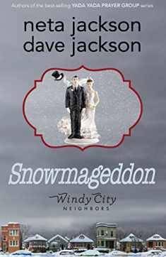 Snowmageddon (Windy City Neighbors)