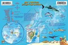 Dry Tortugas Florida Dive Map & Coral Reef Creatures Guide Franko Maps Laminated Fish Card