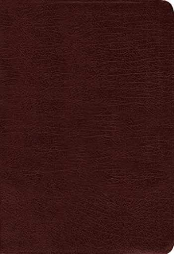 Sell, Buy or Rent Amplified Holy Bible, Large Print, Bonded