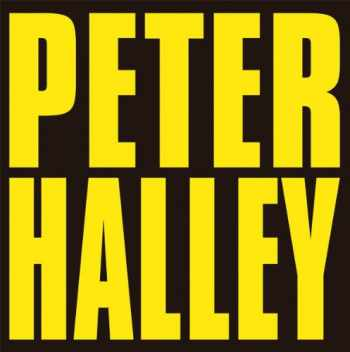 9782930487137-2930487135-Peter Halley: Since 2000