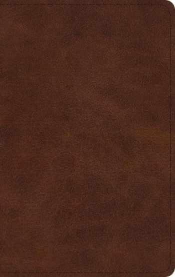 9781433562181-1433562189-ESV Large Print Thinline Bible (TruTone, Deep Brown)