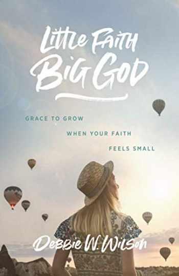 9781684264308-1684264308-Little Faith, Big God: Grace to Grow When Your Faith Feels Small