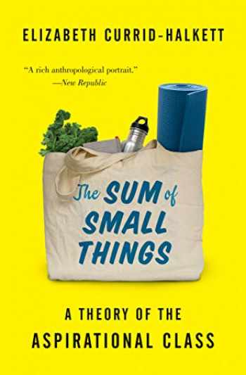 9780691183176-0691183171-The Sum of Small Things: A Theory of the Aspirational Class
