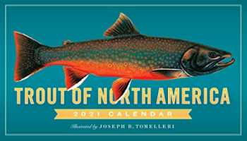 9781523508860-1523508868-Trout of North America Wall Calendar 2021