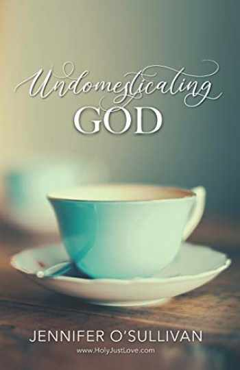 9781734499377-1734499370-Undomesticating God
