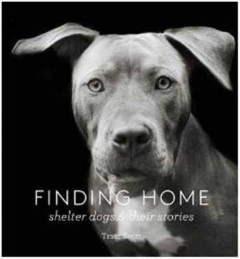 9781616893439-1616893435-Finding Home: Shelter Dogs and Their Stories (A photographic tribute to rescue dogs)