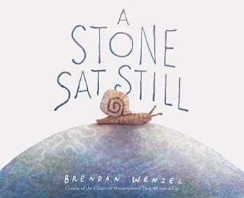 9781452173184-1452173184-A Stone Sat Still: (Environmental and Nature Picture Book for Kids, Perspective Book for Preschool and Kindergarten, Award Winning Illustrator)