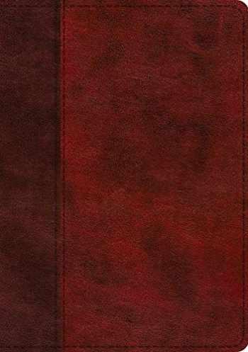 9781433568732-143356873X-ESV Single Column Journaling Bible, Large Print (TruTone, Burgundy/Red, Timeless Design)