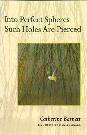 9781882295456-1882295455-Into Perfect Spheres Such Holes Are Pierced