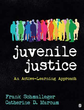9781544300405-1544300409-Juvenile Justice: An Active-Learning Approach
