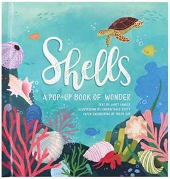 9781623485269-1623485266-Shells: A Pop-Up Book of Wonder (4 Seasons of Pop-Up)