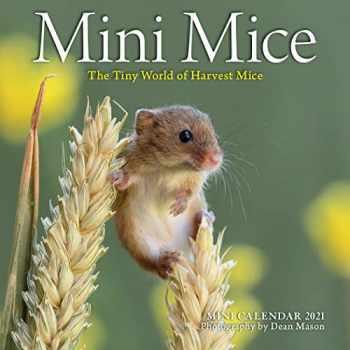 9781523511181-1523511184-Mini Mice Mini Wall Calendar 2021: The Tiny World of Harvest Mice