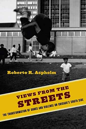 9780231187732-0231187734-Views from the Streets: The Transformation of Gangs and Violence on Chicago's South Side (Studies in Transgression)