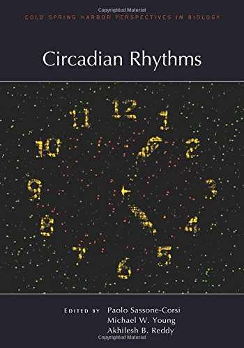 9781621821243-1621821242-Circadian Rhythms (Perspectives CSHL)