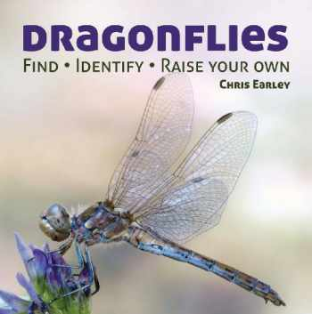 9781770851856-1770851852-Dragonflies: Catching - Identifying - How and Where They Live