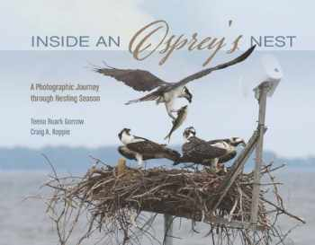 9780764352003-0764352008-Inside an Osprey's Nest: A Photographic Journey through Nesting Season