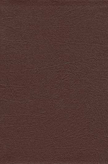 9789814270960-9814270962-Revival Study Bible (leather Burgundy)