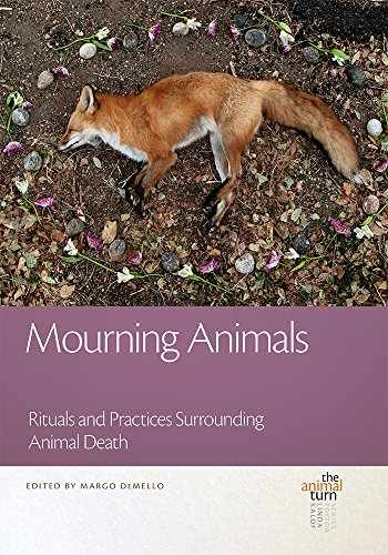 9781611862126-1611862124-Mourning Animals: Rituals and Practices Surrounding Animal Death (The Animal Turn)