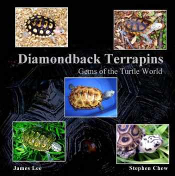 9781934937013-1934937010-Diamondback Terrapins: Gems of the Turtle World